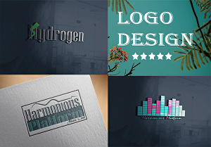 I will create stunning professional logos for your business concern