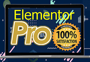 I will design wordpress website by elementor pro page builder in 24 hours