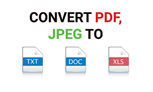 I will convert JPEG, PDF to Word, Excel, Google Doc or Sheets