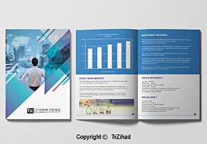 I will Do Professional Business Brochure Design