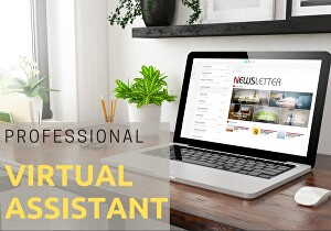 I will be Your Virtual Assistant  - 2  hours Data Entry