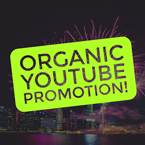 I will promote your YouTube videos Organically