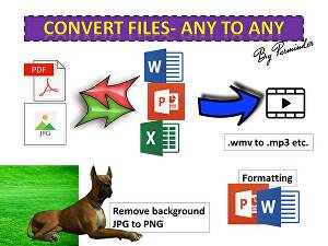 I will convert pdf, jpg to word, excel, ppt, video, background removal