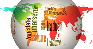 I will Translate professionally  from English into French  and French into English