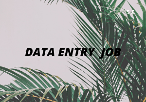 I will do all kind of Data Entry job