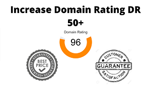 I will increase website domain rating to DR 50 plus with high quality backlinks