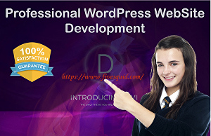 I will do wordpress business website with divi theme