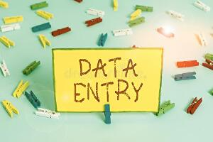 I will do error free data entry work in short span