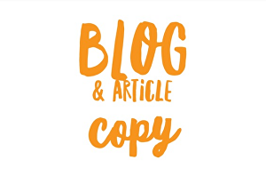 I will write your blog or article copy
