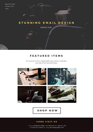 I will Design professional responsive email templates