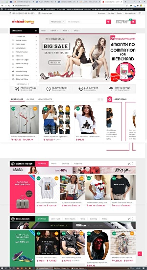 I will make professional WordPress website For You