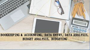 I will provide Bookkeeping and accounting, data entry services