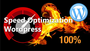 I will increase WordPress speed optimization and page speed