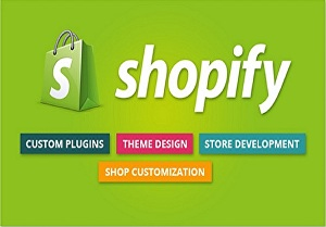 I will be your  ecommerce store shopify theme customization expert