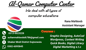 I will create an attractive business card design in 24 hours