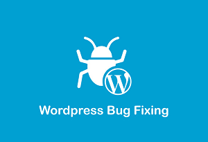 I will fix WordPress, HTML, CSS bugs