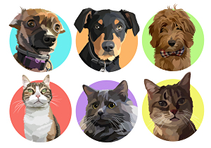 I will draw your beloved pet into cartoon portrait