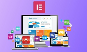 I will do landing page and website using elementor pro