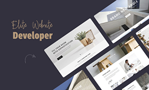 I will develop an elite quality website