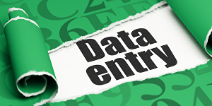 I will do data entry and related tasks