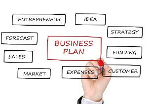 I will write an investor ready business plan for start ups