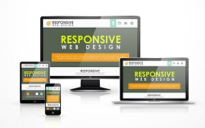 I will customize any WordPress website or WordPress design for you