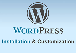 I will do wordpress Installation and wordpress theme customization