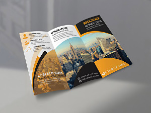 I will design a Professional Flyer, Trifold, Brochure design