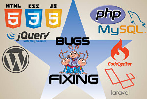 I will fix bugs, errors or issues in your PHP and WordPress website