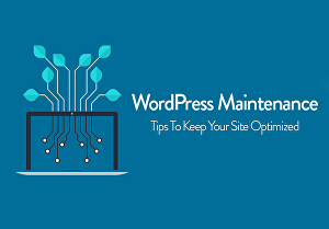 I will Do WordPress website Maintenance