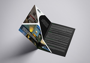 I will create business flyer design