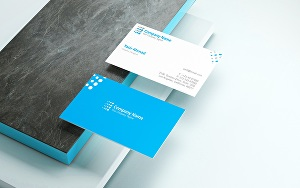 I will Create Your Business Card or Visiting Card