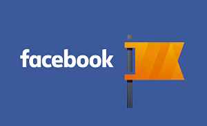 I will setup a Facebook Business Page