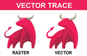 I will trace or redraw vector any image