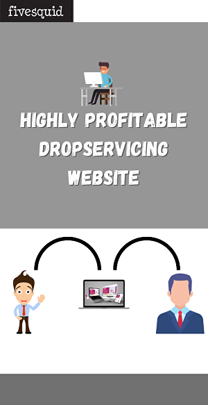 I will create highly profitable drop servicing website