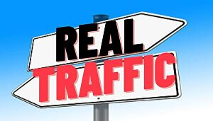 I will drive real traffic to your website for 1 month