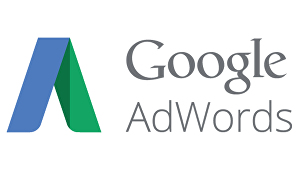 I will setup and optimize Google Adwords Campaign for you
