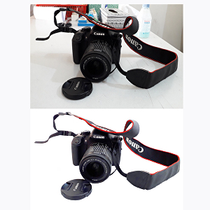 I will do Photo background removal within 24 hrs