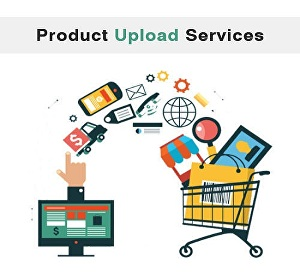 I will upload 2000 products and add content description on your online store website