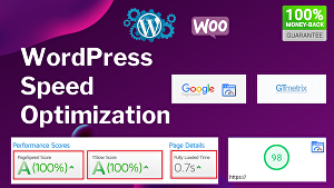 I will optimize your WordPress Website Speed above 90+ on GTmetrix and Google Pagespeed