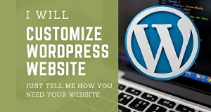 I will customize your website by avada, be, bridge, the7 themes