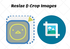 I will crop and resize your images without loosing quality