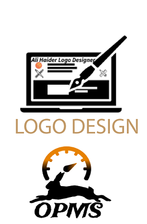 I will design attractive logo for company or software
