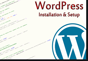 I will install WordPress, setup theme, plugin and import demo with customization
