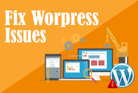 fix any issue related to WordPress