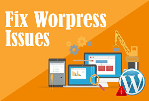 I will fix any issue related to WordPress