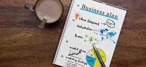 I will write you a custom business plan in 24 hrs