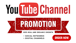 I will guarantee youtube channel promotion with results