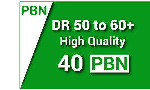 I will make DR 50 to 60+ high-quality 40 PBN backlinks for SEO Google ranking