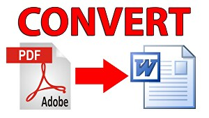 I will convert Pdf file to word document